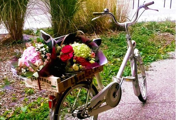 livraison-fleur-a-domicile-lastrantia-annecy