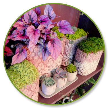 decoration-interieur-fleuriste-annecy