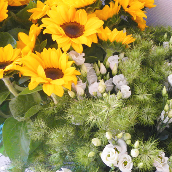 fleur-fraiche-4-astrantia-annecy
